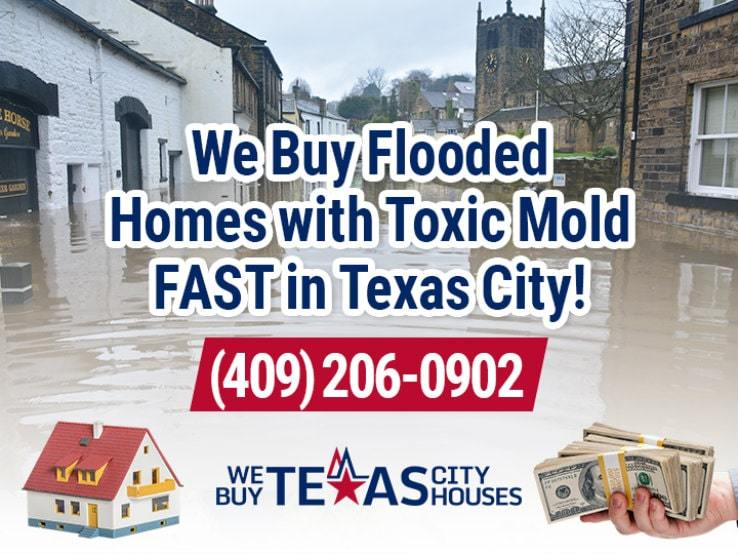 texas city water damage and mold